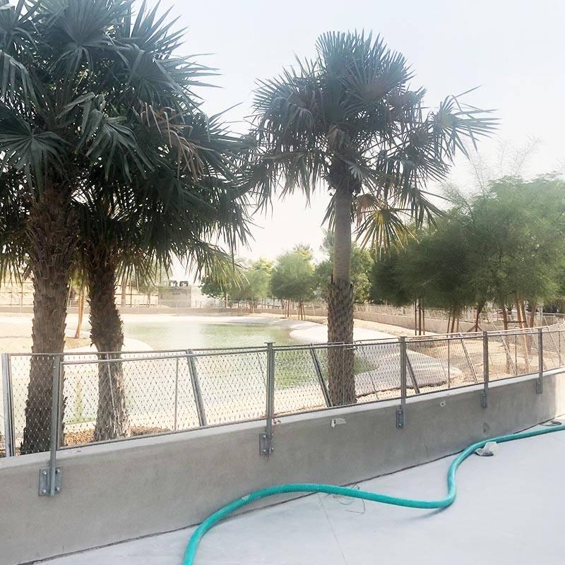 Zoo Aviary Bird Mesh Enclosure Stainless Steel Wire Rope Net